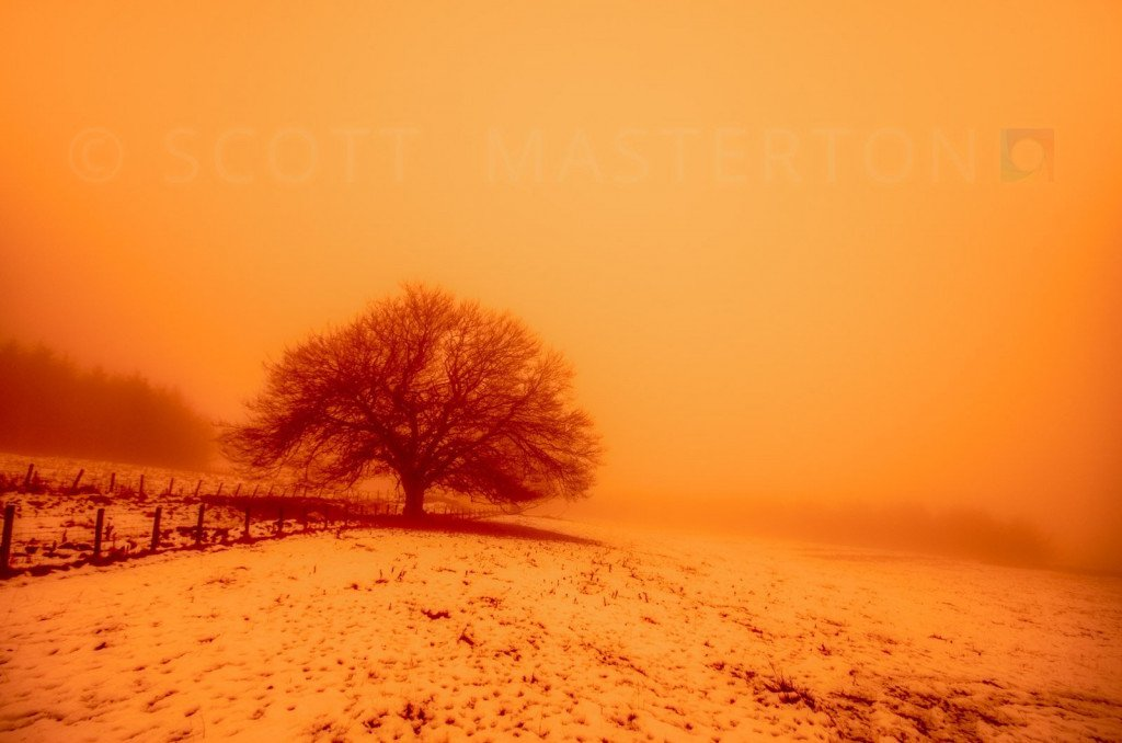 Nuclear Winter